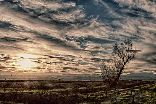 Ethereal Sky by Lisa Chorny