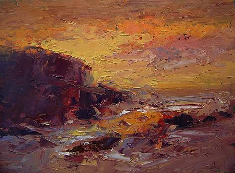 Etude Spooner's Cove at sunset by R W Goetting