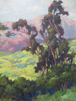 Eucalyptus by Kevin Yuen
