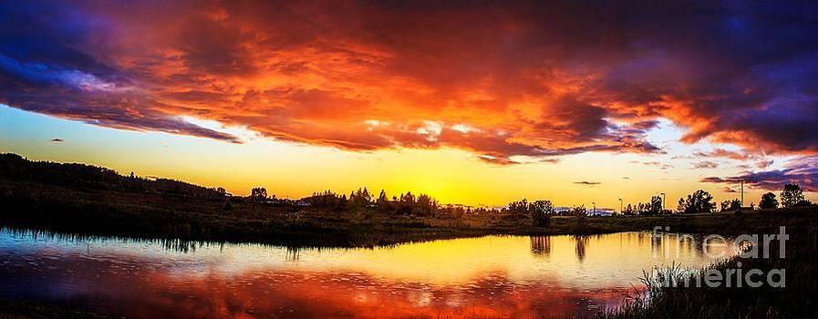 Eugene. Oregon Wetlands Sunset 1 by Michael Cross