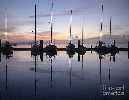 Eureka Harbor at Sunset by Laura  Wong-Rose