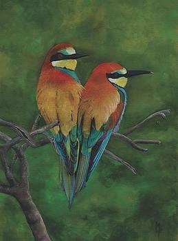 European Bee-eater by Marsha Friedman