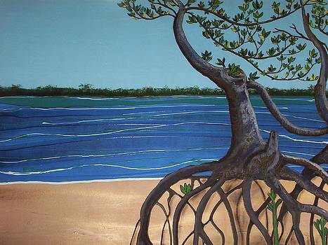 Evans Landing Mangroves by Joan Stratton