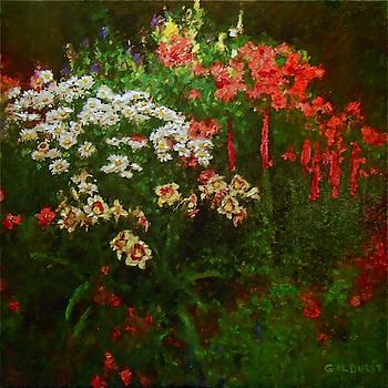 Michael Durst - Evanston Garden