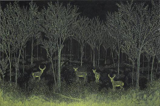 Evening Along The Animas by Doug Miller