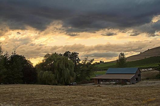 Mick Anderson - Evening Farm Scene near Ashland