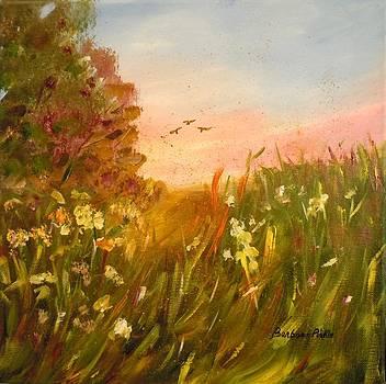 Evening Glow by Barbara Pirkle