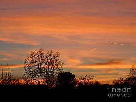 Fred Wilson - Evening Glow