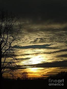 Scott B Bennett - Evening Glow ll