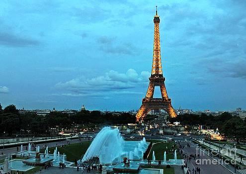Ines Bolasini - Evening in Paris