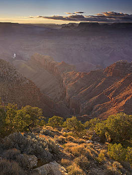 Evening light at the Grand Canyon by Richard Berry