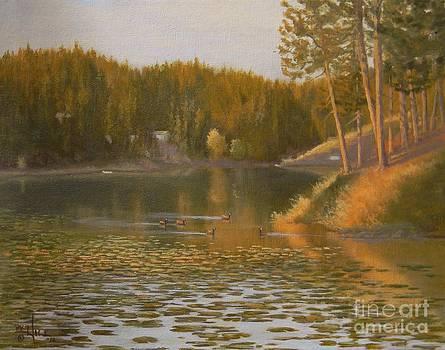 Evening Light on Avondale by Paul K Hill