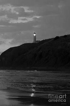 Sarah Schroder - Evening Light