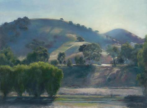 Evening Light by Terry Guyer