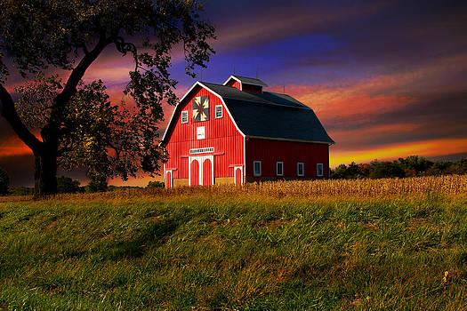 Evening Light by Virginia Folkman