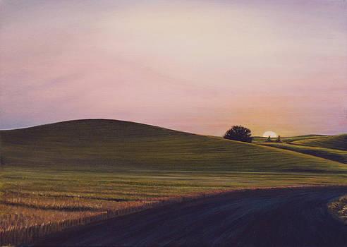 Evening near Viola by Leonard Heid