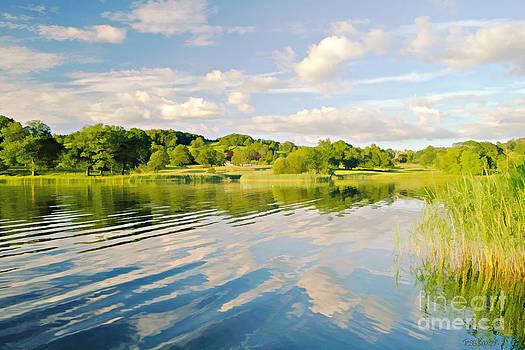 Evening on Esthwaite Water by Tess Baxter