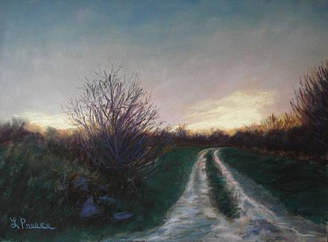 Evening Rain by Linda Preece