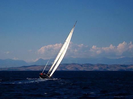 Evening Sails by Leena Pekkalainen