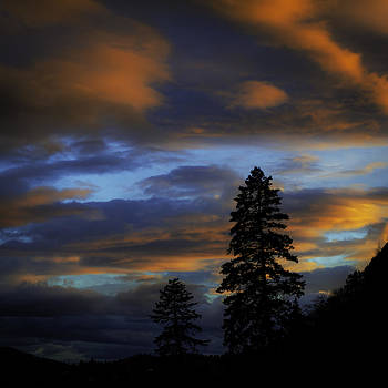 Evening Silhouette by Rod Sterling