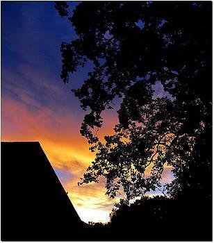 Martin Williams - Evening Sky