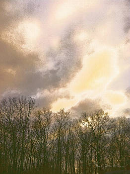 Evening Sky by Nancy Olivia Hoffmann