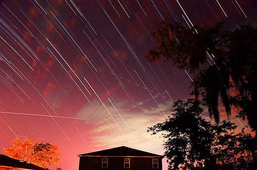 Evening Stars by Melissa Schumacher