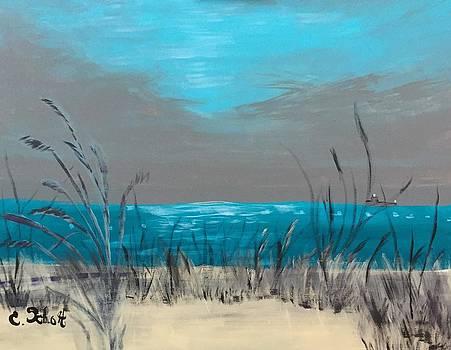 Evening Storm by Christina Schott