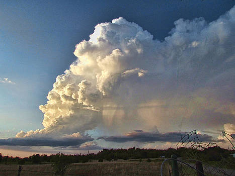 Evening Storm by Shannon Story
