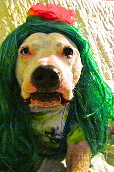 Ever have a green hair day? by Q's House of Art ArtandFinePhotography