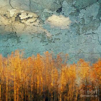 Everglades Autumn by Annie Lemay