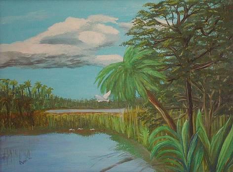 Everglades Marsh by Patti Lauer