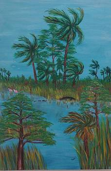 Everglades Water Hole by Patti Lauer