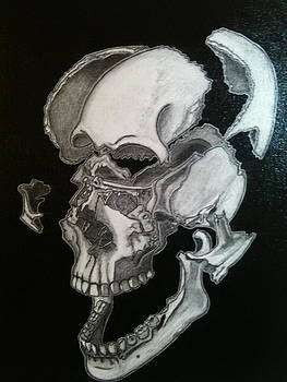 Every skull has their silver lining by Nancy Fischbach
