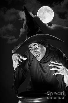 Evil Witch Under A Full Moon by Sharon Dominick