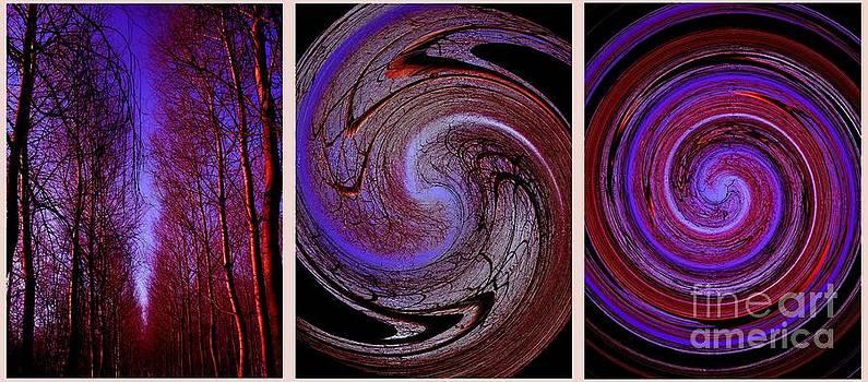 Evolution de la Foret en Spirale by Jessie Art
