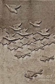 Evolution No. Two by Andrea Kollo