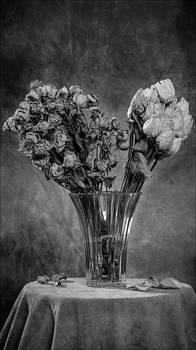 Exeunt #3 by Morocco Flowers Images