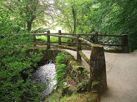 Exmoor Footbridge by Philip Francis