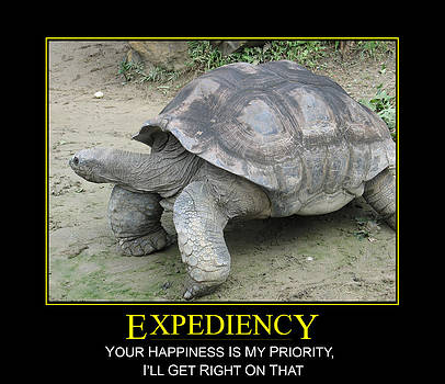 John Clark - Expediency