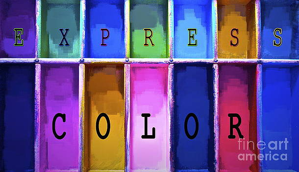 Gwyn Newcombe - Express Color