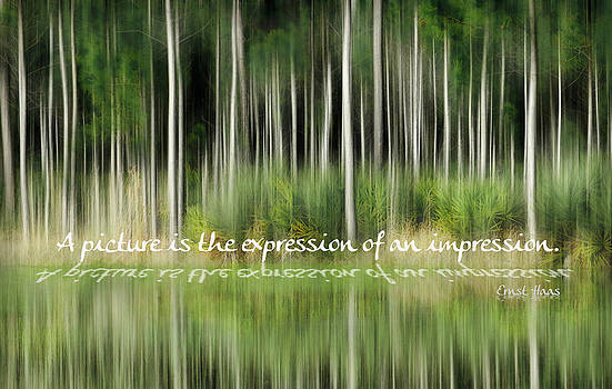 Grace Dillon - Expression of an Impression