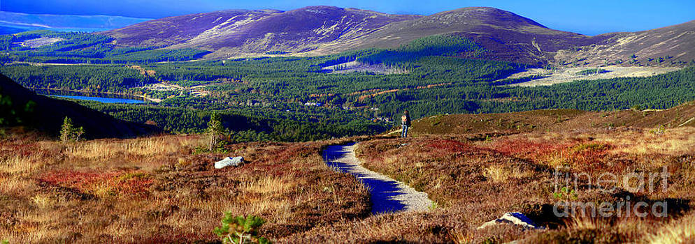 Extasy in Cairngorms National Park Scotland by Lilianna Sokolowska