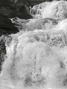 Angela Hansen - Exuberant Springtime Waterfall