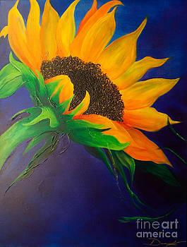 Following The Sun 1 by Dana Kern