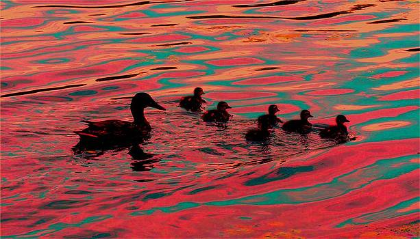 Eye Candy Digital Version 3 of New Hatched Ducklings by Kathleen Palermo