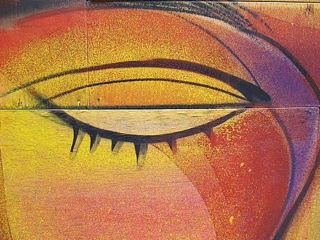 Eye Declare by Malcolm B Smith