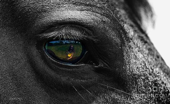Eye Love You by Lori Ann  Thwing