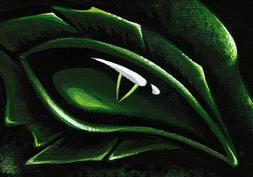 Eye Of The Emerald Green Dragon by Elaina  Wagner