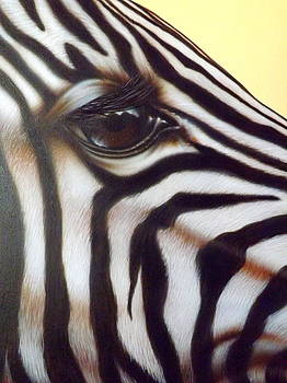 Eye of the Zebra by Darren Robinson